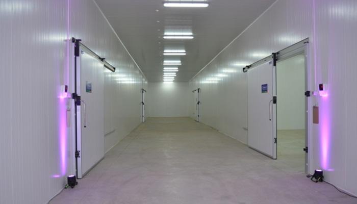 puertas-frigorificas2